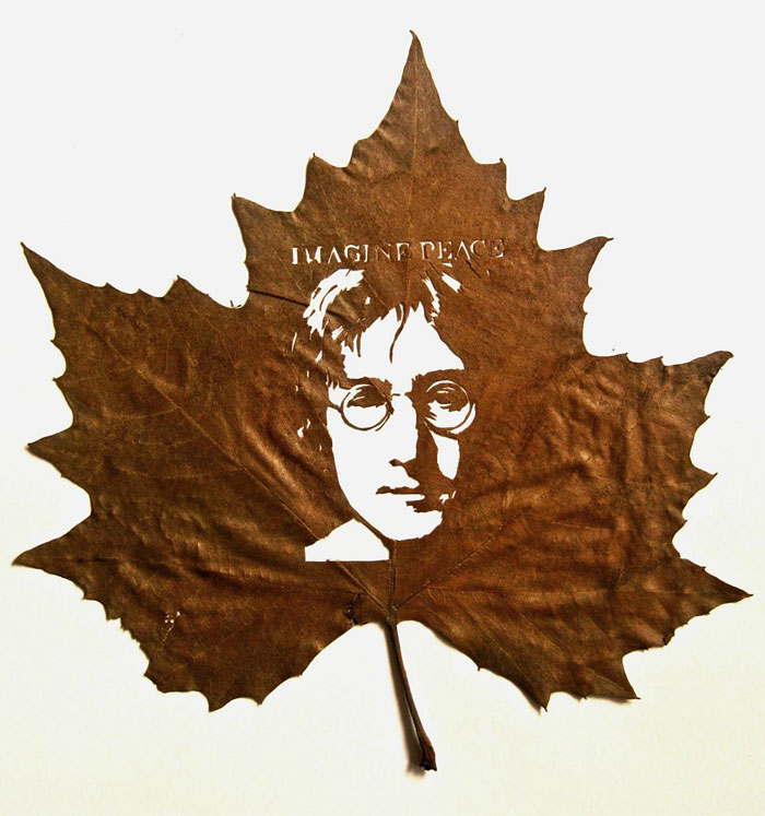 leaf-cutting-omid-asadi-17