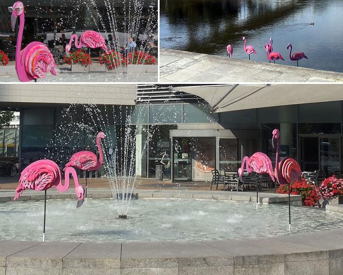 Pink Flamingos Installation Across Vilnius City Centre