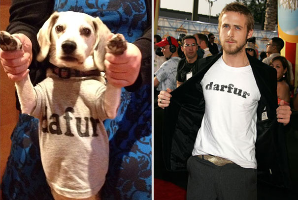 wrigley-at-the-movies-dog-reenacts-famous-movies-6