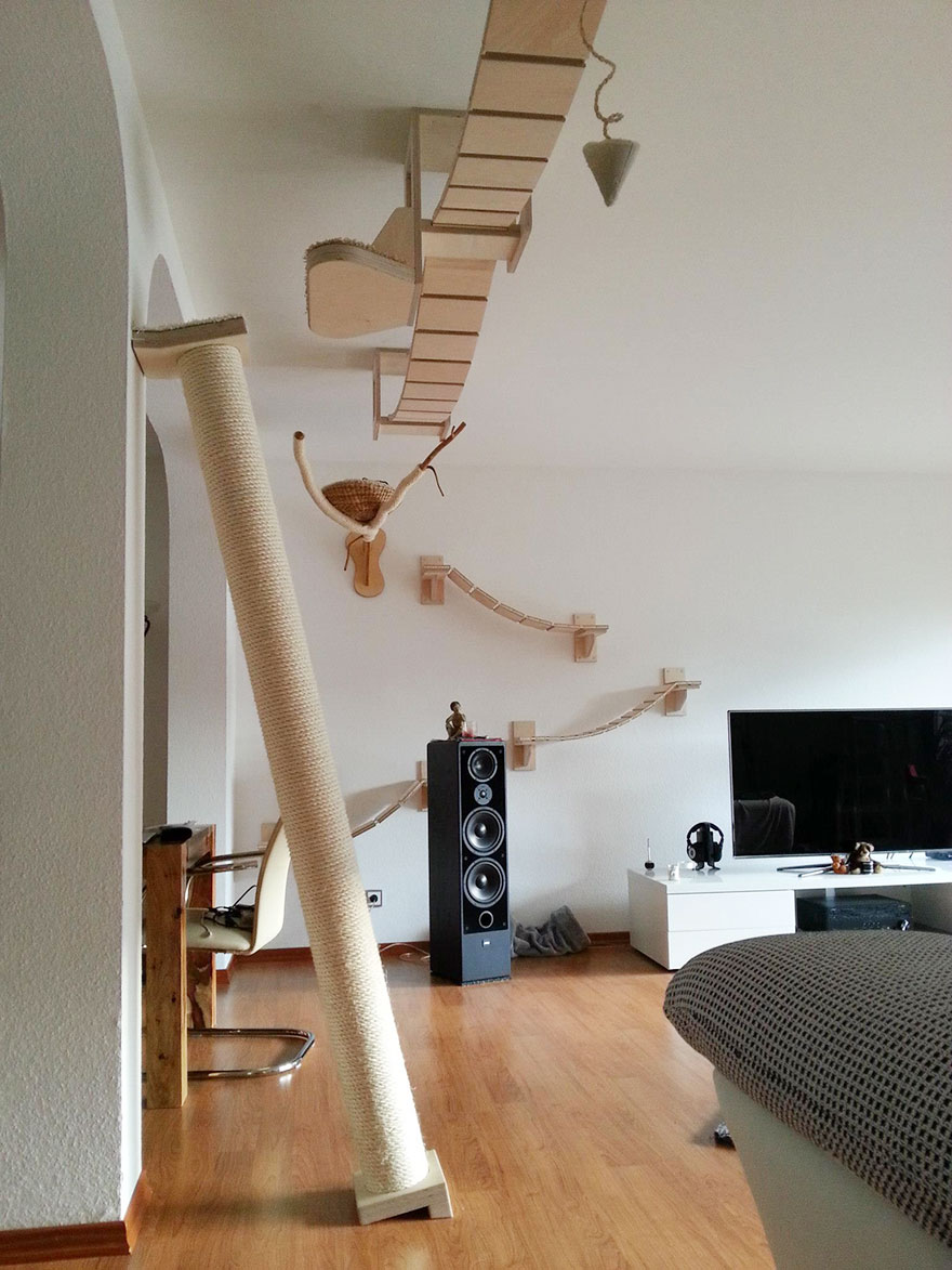 overhead-cat-playground-room-goldtatze-3
