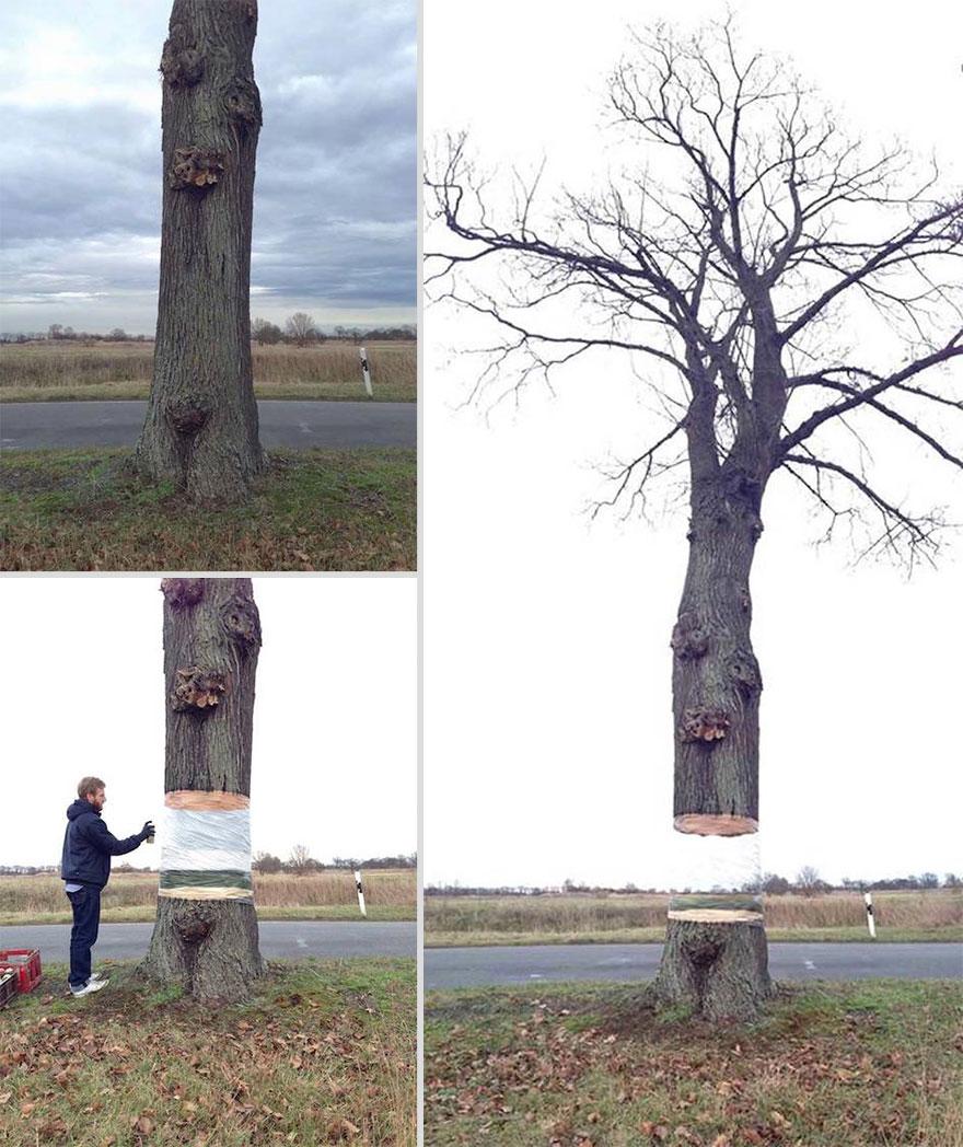 painted-hovering-tree-illusion-daniel-siering-mario-shu-1
