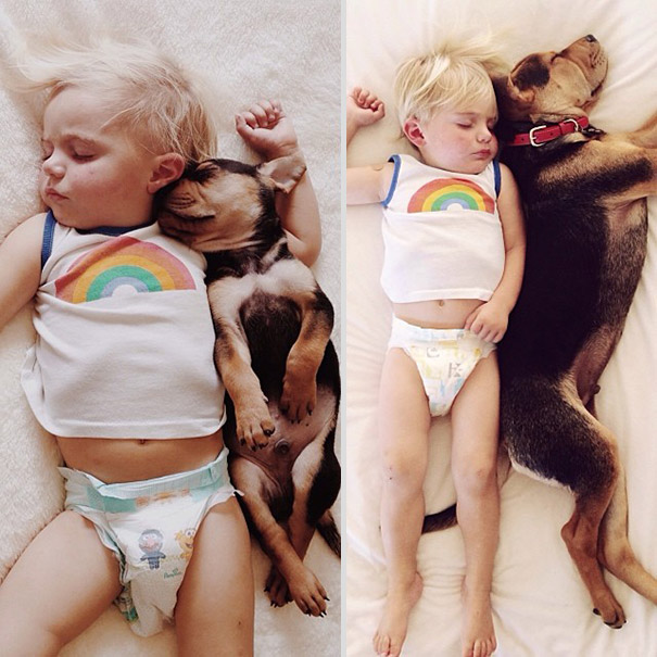 toddler-naps-with-puppy-theo-and-beau-2-