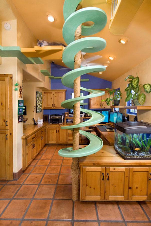 cat-paradise-home-trillium-enterprises-1