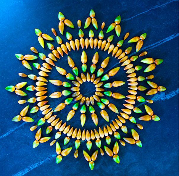 danmala-flower-mandala-kathy-klein-5
