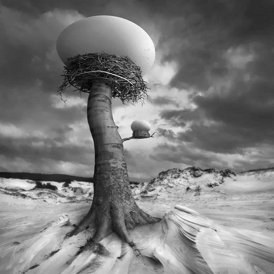 surreal-photo-manipulation-dariusz-klimczak-30