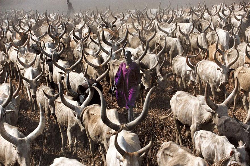dinka-tribe-sudan-africa-carol-beckwith-angela-fisher-10
