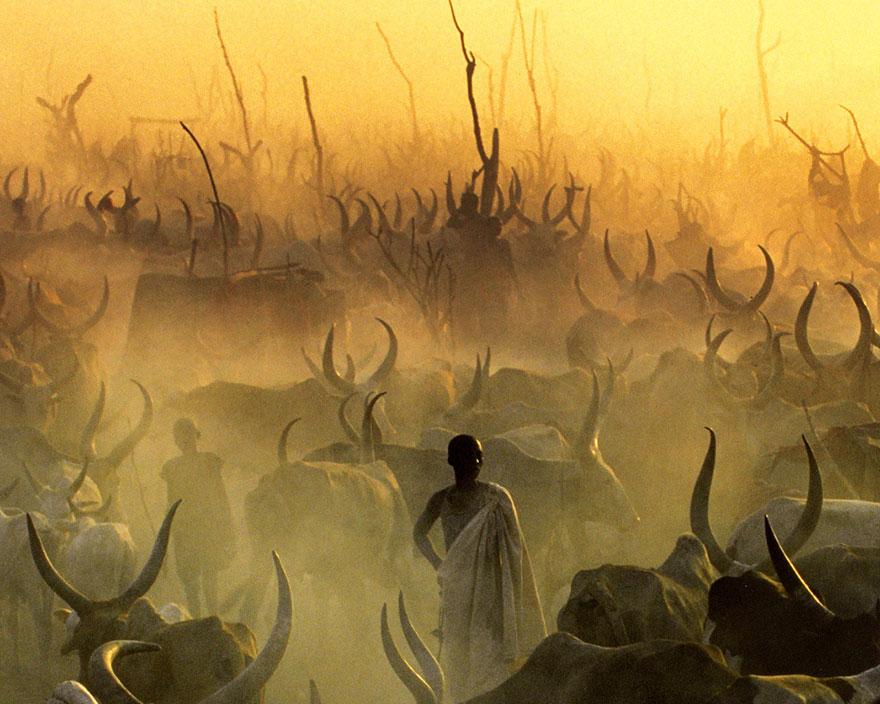dinka-tribe-sudan-africa-carol-beckwith-angela-fisher-3