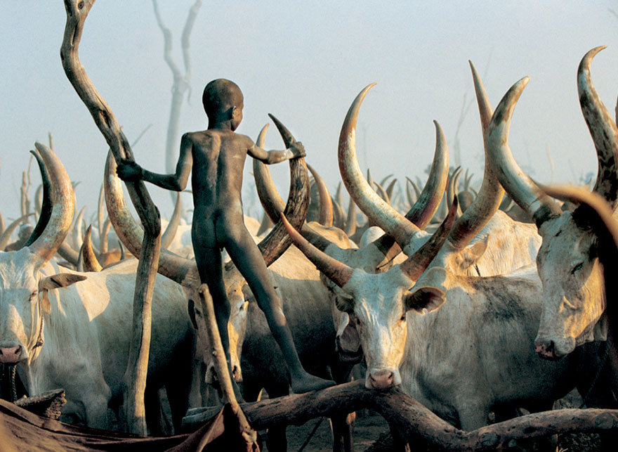 dinka-tribe-sudan-africa-carol-beckwith-angela-fisher-7