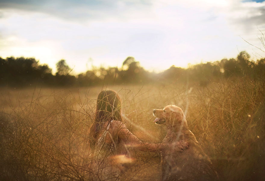 dog-photography-chuppy-golden-retriever-jessica-trinh-2