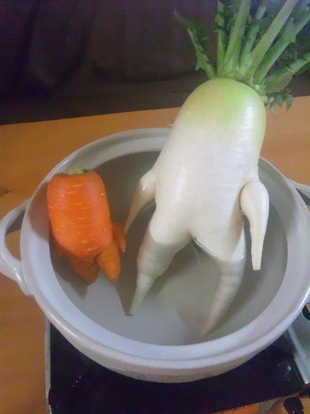 Foto Buah Dan Sayuran Berbentuk Lucu 6