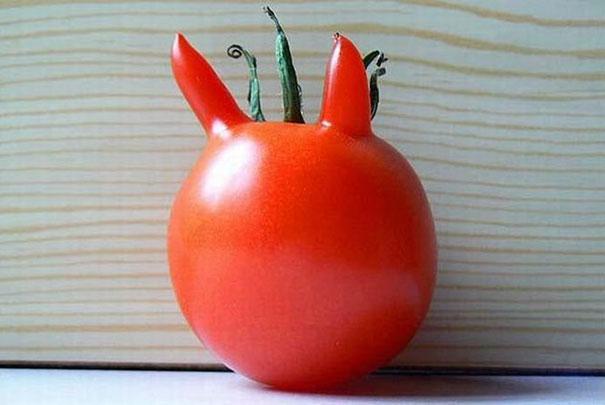 Foto Buah Dan Sayuran Berbentuk Lucu 8