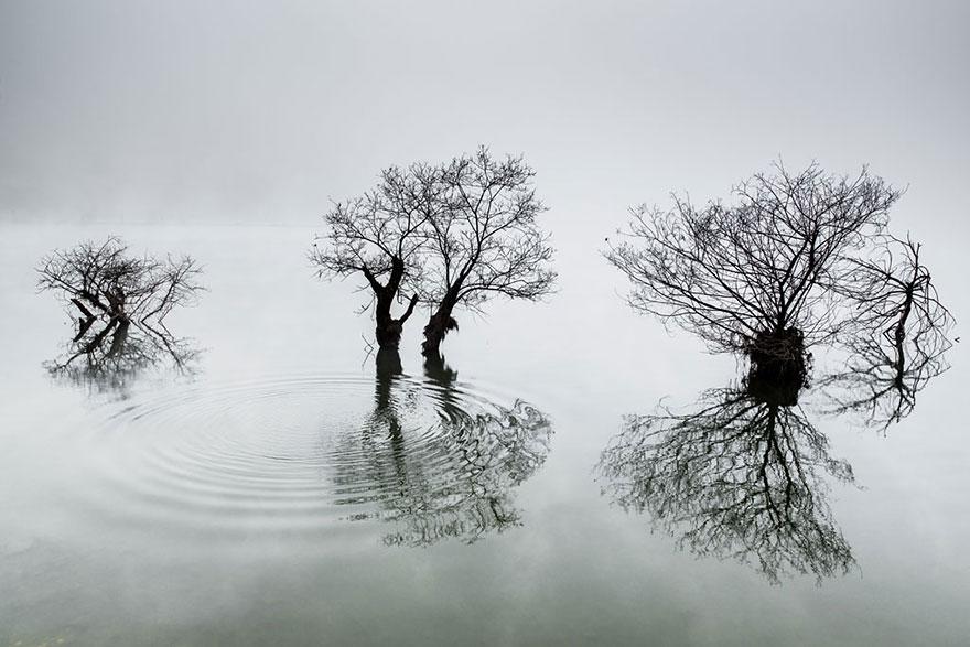 sony-world-photography-awards-2014-winners-5