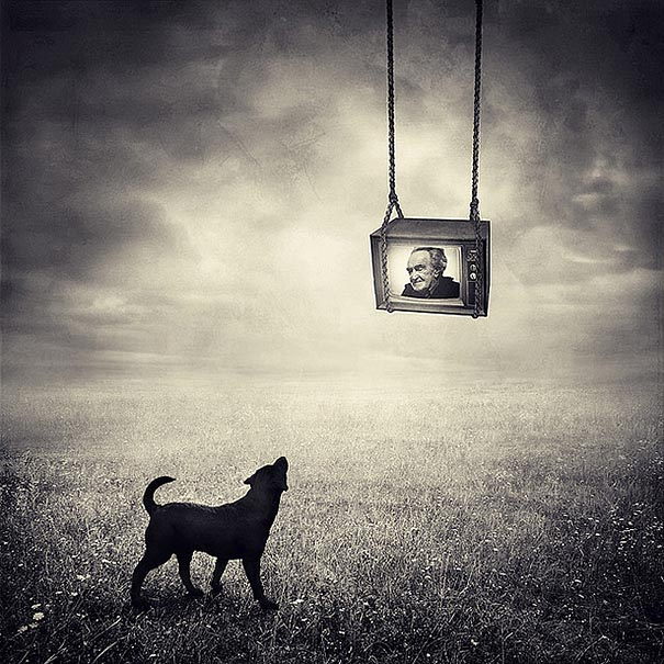 surreal-photoshop-images-shelter-animals-sarolta-ban-5