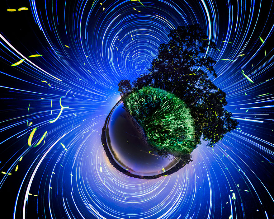 fireflies-time-lapse-photography-vincent-brady-3