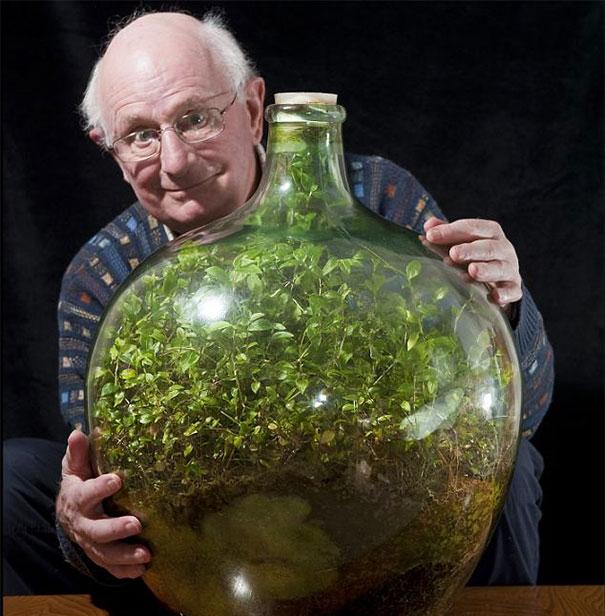 sealed-bottle-garden-david-latimer-1