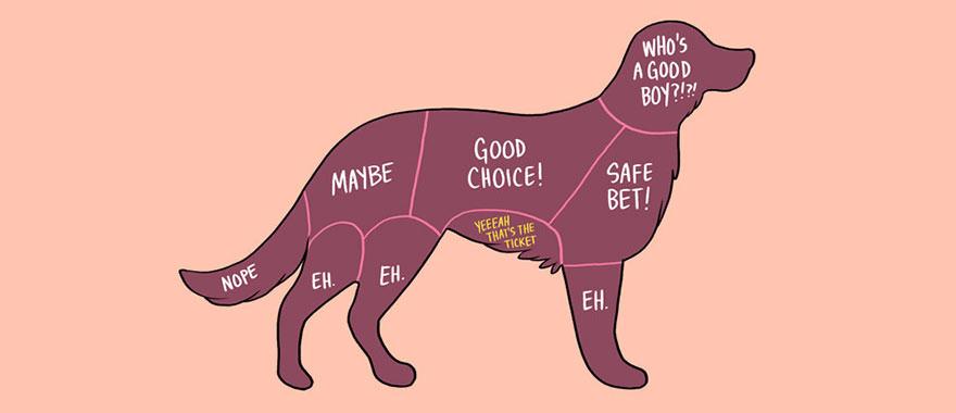 Ilustrasi Anjing Dalam Diagram