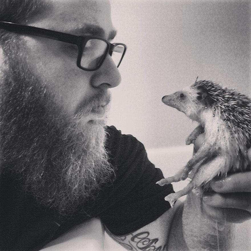 norman-cute-hedgehog-brett-jessie-13