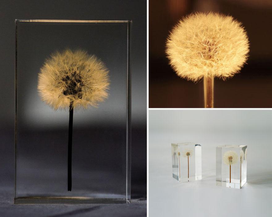 oled-dandelion-lights-takao-inoue-5