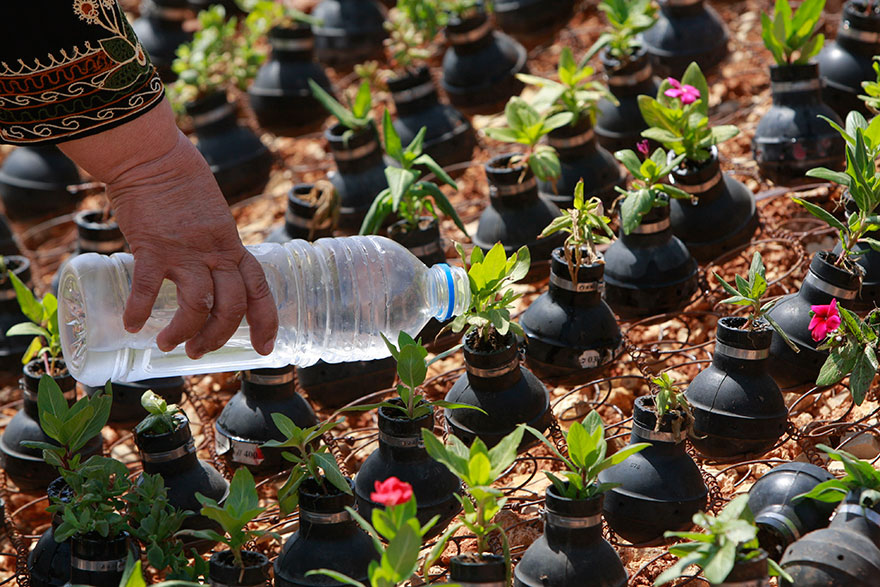tear-gas-flower-pots-palestine-11