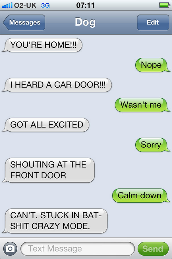 texts-from-dog-20