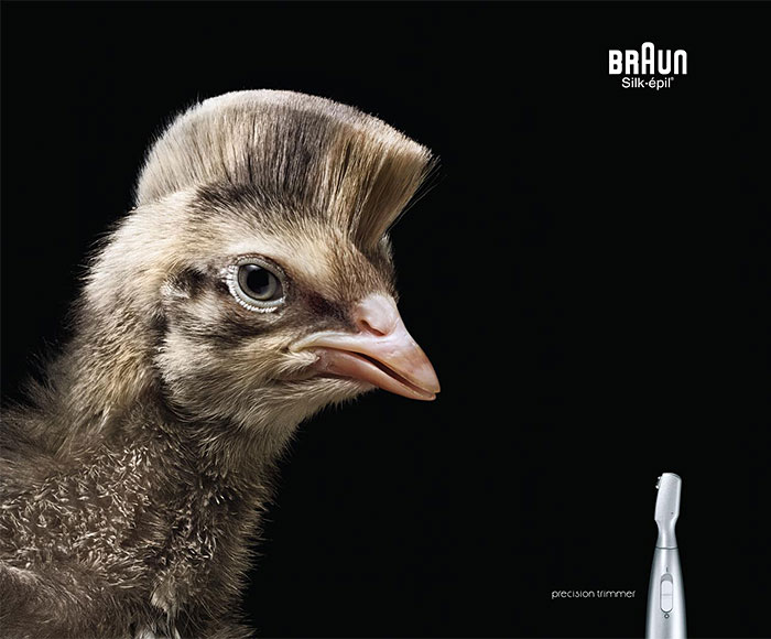 funny-ads-with-animals-73