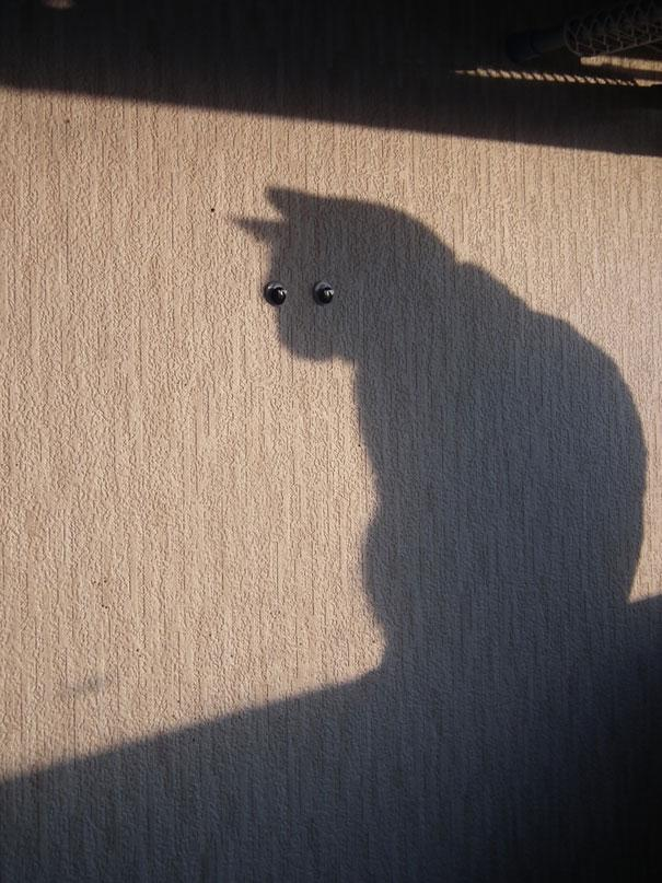 funny-shadow-fails-illusions-2