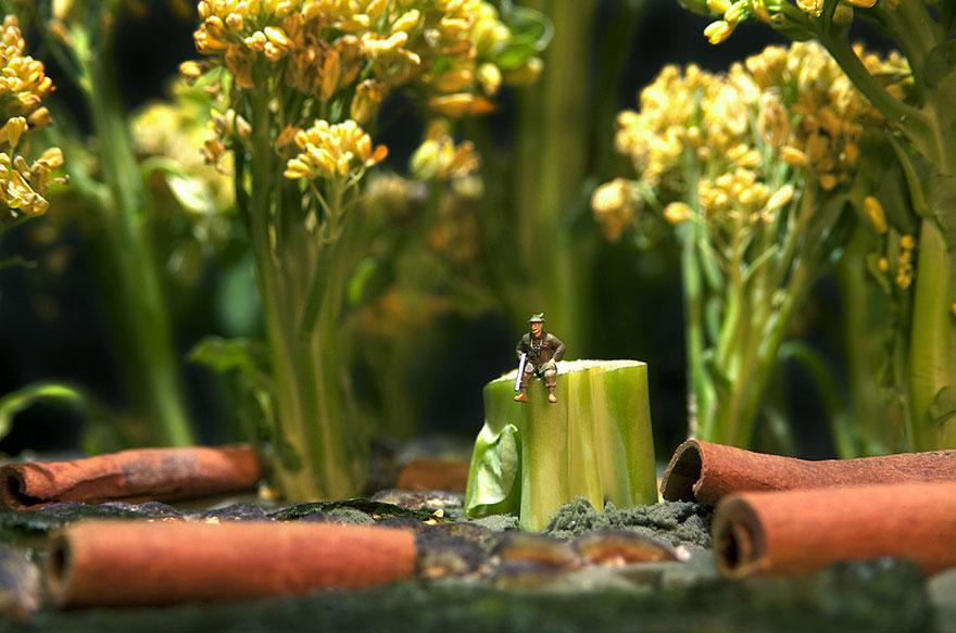 minimize-food-miniature-diorama-william-kass-19