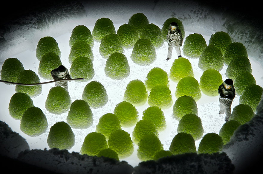 minimize-food-miniature-diorama-william-kass-9