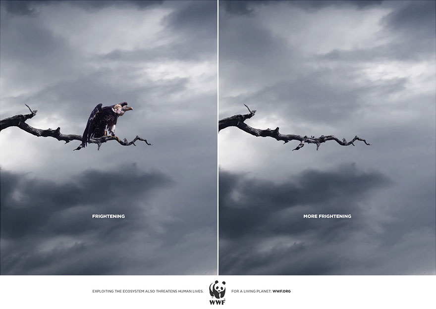 public-social-ads-animals-125