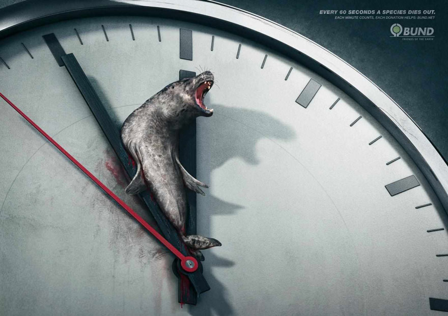 public-social-ads-animals-4