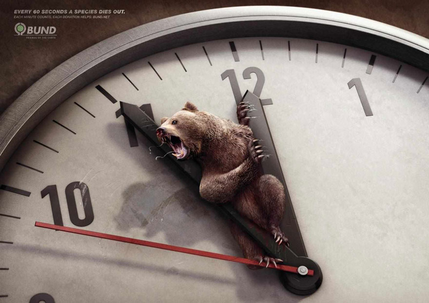 public-social-ads-animals-6