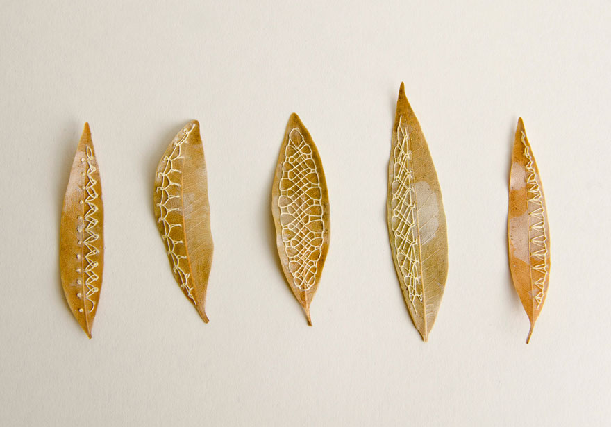 stitched-leaves-embroidery-hillary-fayle-4