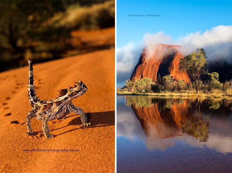 paisagem-natureza-fotografia-australia-julie-Fletcher-9