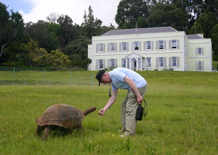 182 años de edad-tortuga-jonathan-16