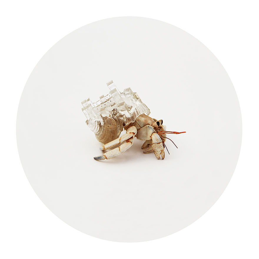 3d-printed-hermit-crab-architectural-shells-aki-inomata-5