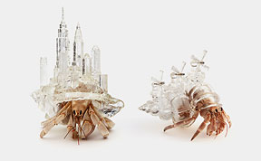 Artist 3D-Prints City-Shaped Shells For Hermit Crabs