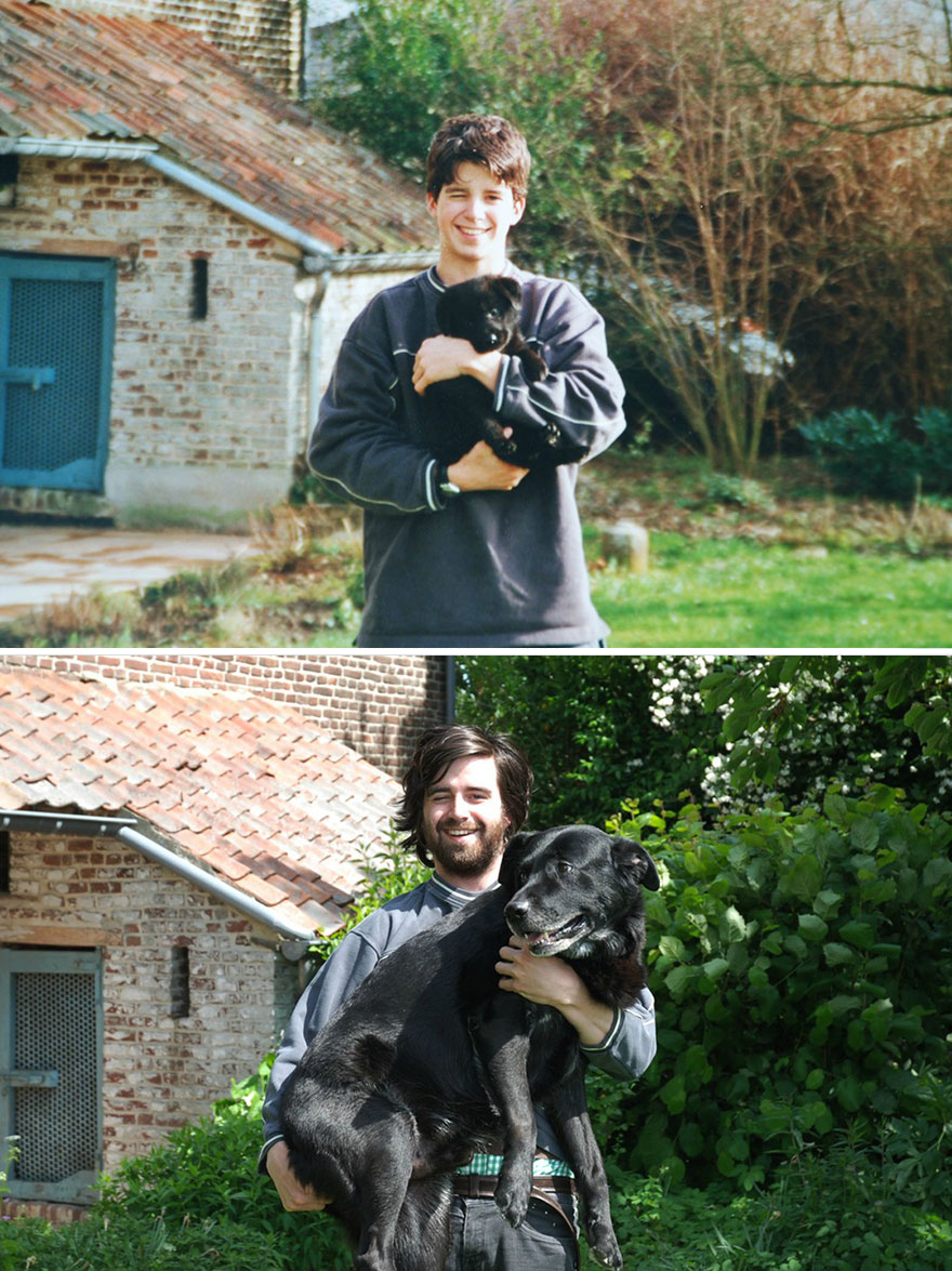 animals-before-after-then-now-37