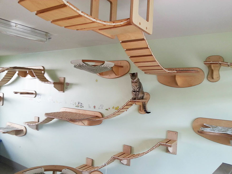 cat-furniture-creative-design-36