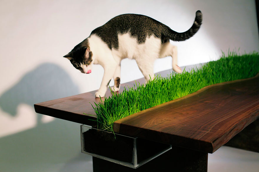 cat-furniture-creative-design-4