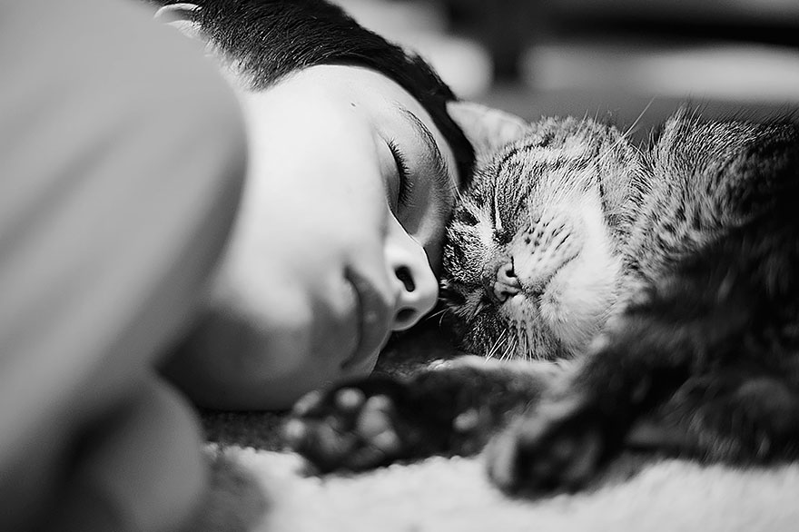 cat-looking-at-you-black-and-white-photography-102