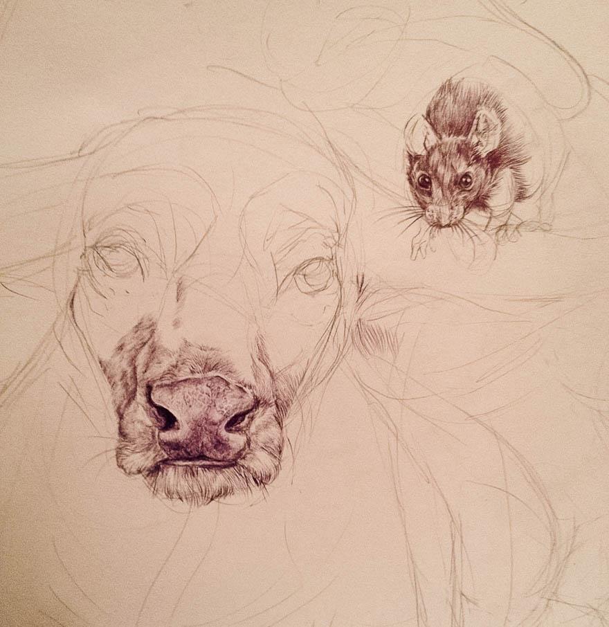 chinese-zodiac-animals-drawing-casterlyrock-savannah-burgess-1