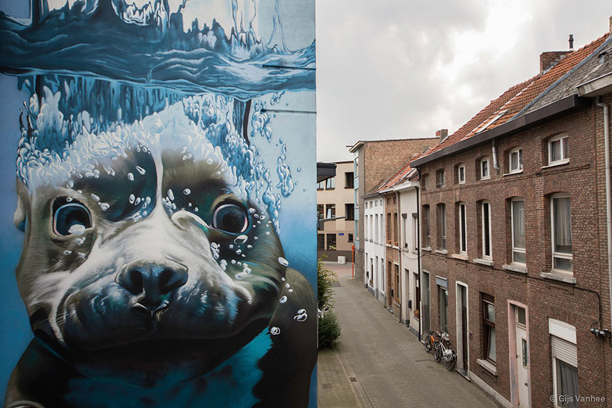 diving-dog-street-art-mural-smates-bart-smeets-2