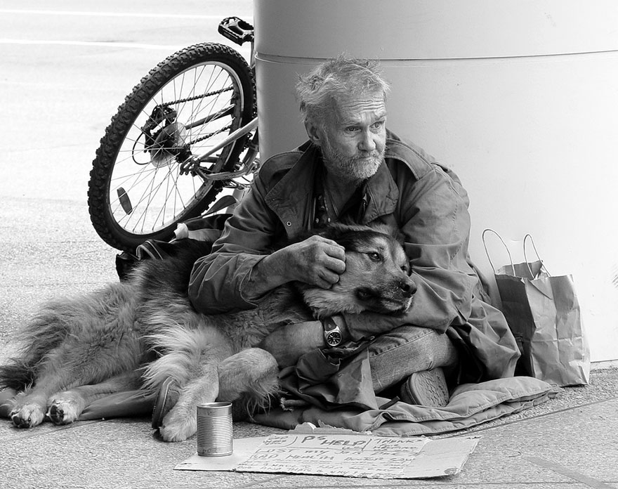 homeless-dogs-and-owners-16