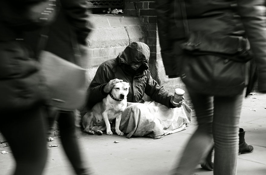 homeless-dogs-and-owners-6