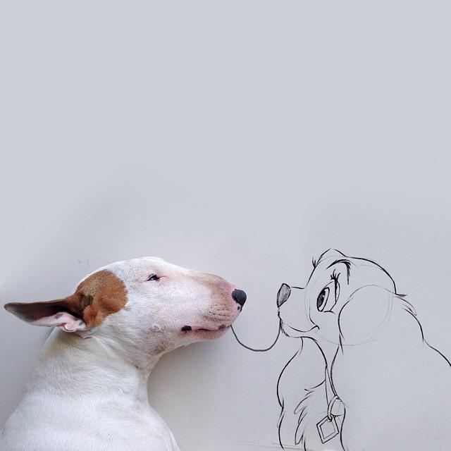 Jimmy-choo-bull-terrier-ábrákat-rafael-mantesso-5