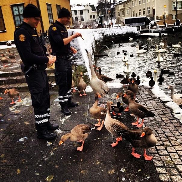 police-instagram-logreglan-reykjavik-iceland-8