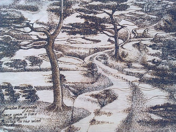 sunlight-drawing-pyrography-art-jordan-mang-osan-12