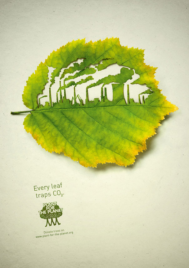 Every leaf traps CO2 Advertisement