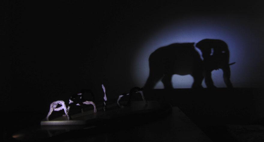 africa-elephant-shadow-art-3