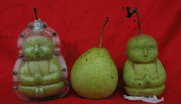 buddha-pear-1